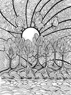 Dia Internacional de los Bosques, 21 marzo.Este día de celebración mundial de los bosques nos conciencia sobre la importancia de todos los tipos de ecosistemas boscosos y de árboles